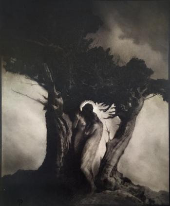 1905 Anne Brigman