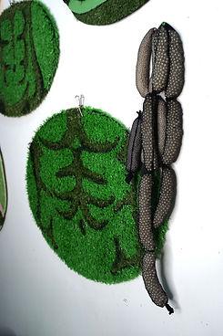 elissa ecker - GRASSABS.SAUSAGE2.jpg