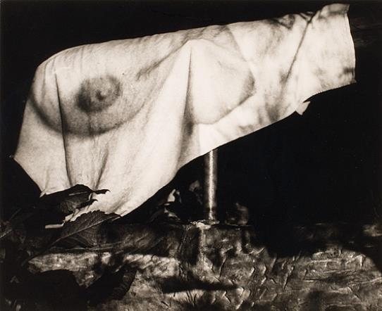 1963 Eva Fuka