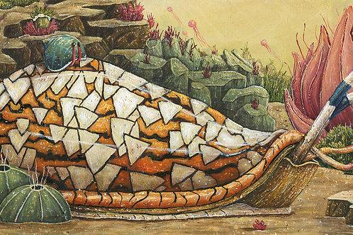 Cone Snail (Print)