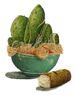 Cactus Spaghetti