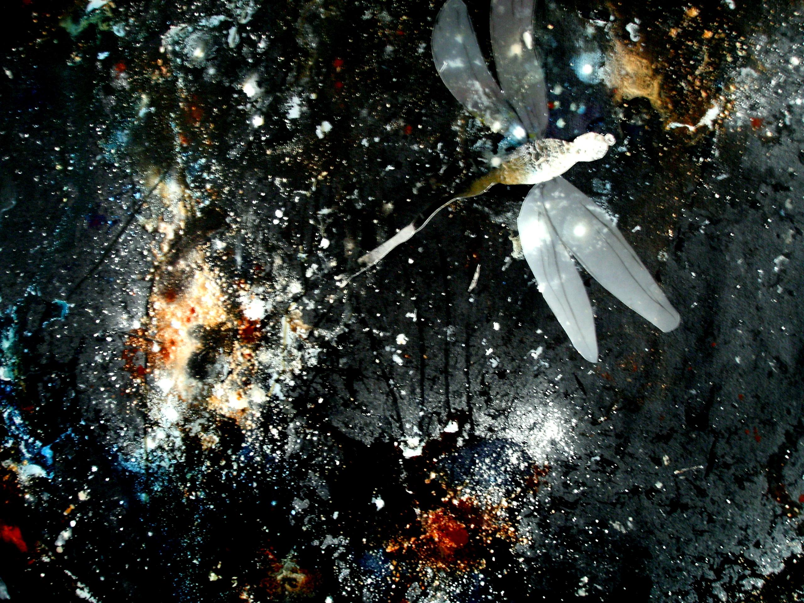 Metamorphoses V | Detail