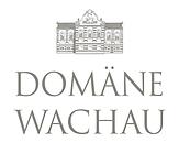 DW_Logo mit Schlössel - grauer Schriftzug.webp