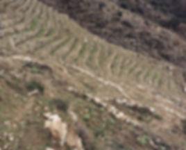 06 Valdeorras.jpg