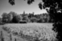 Dom_de_BELLEVILLE_S_Chapuis064.jpg