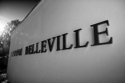 Dom_de_BELLEVILLE_S_Chapuis001.jpg