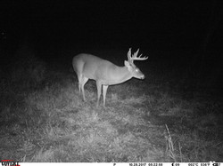 deer trail pics (18)