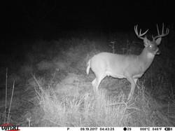 deer trail pics (35)