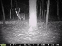 deer trail pics (51)