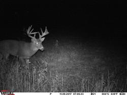 deer trail pics (2)