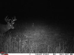 deer trail pics (1)