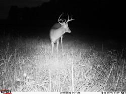 deer trail pics (4)
