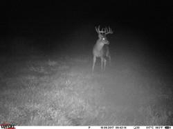 deer trail pics (22)