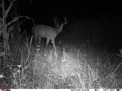deer trail pics (45)