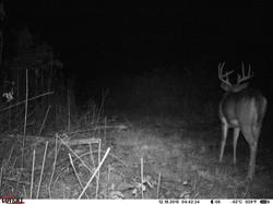deer trail pics (74)