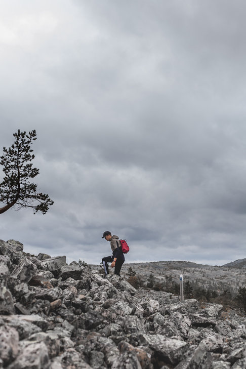 The harsh national park of Pyhä-Luosto