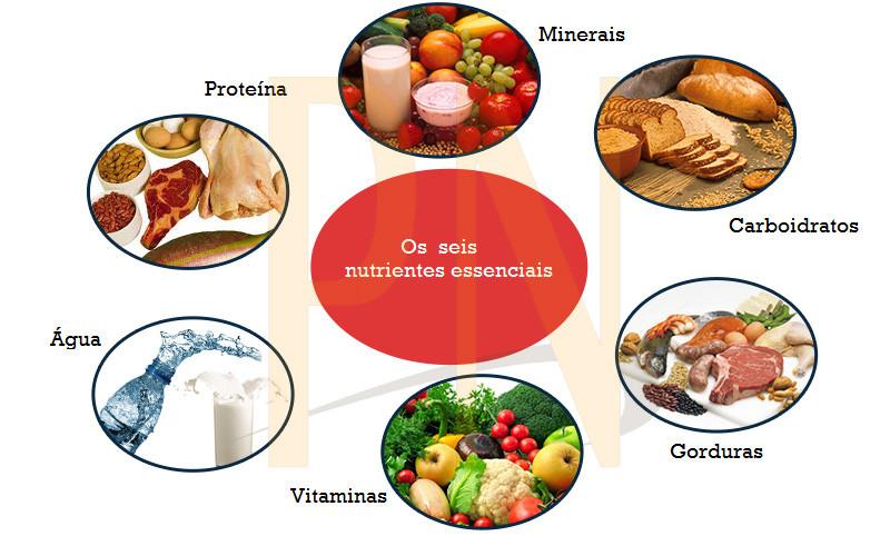 Alimentação e Pilates - Blog - Pilates Ponto Norte