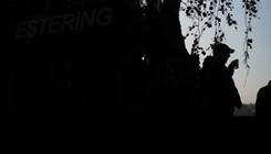 WRX-Estering-Buxtehude-4.jpg