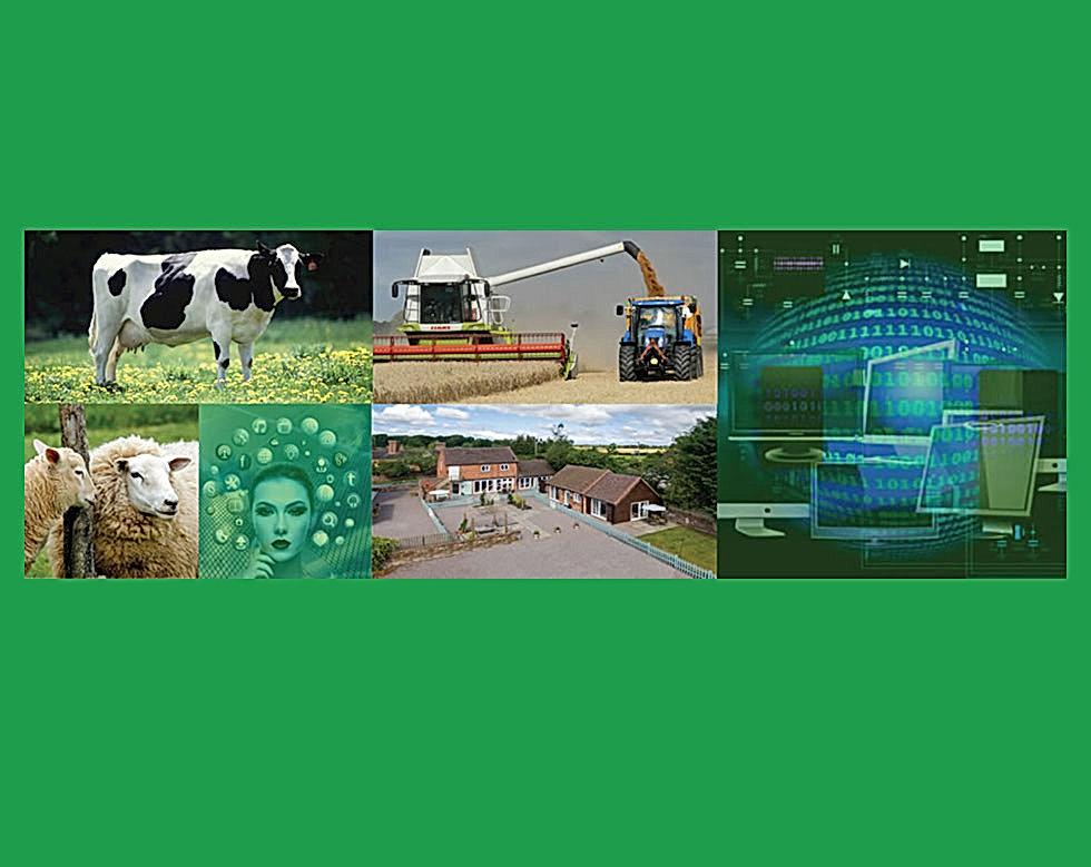 RuralTech-Wix-Banner-Greenback-980x779.j