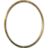ring1.png