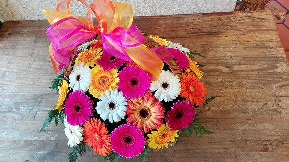Canasta de gerberas multicolor