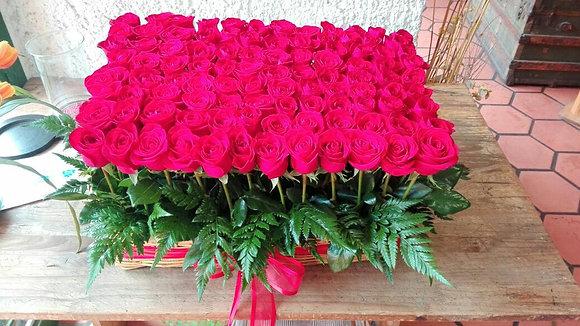 Jardín centenario de rosas