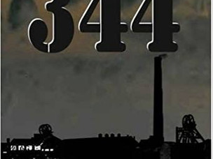 Review of '344 A Story of the Pretoria Pit Disaster' by Andrea Jane Finney