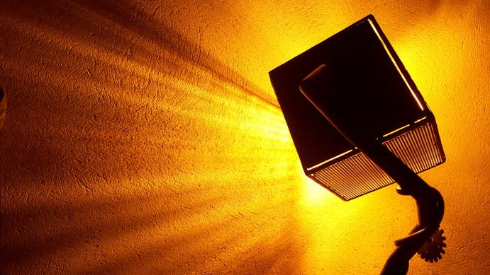 lampe indus_Mouche