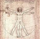 Vitruviun Man
