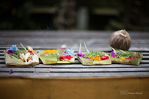 Photograph of boxe of offerings at the entrance of a temple in Ubud, Bali.