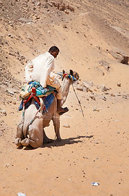 An egyptian man riding his camel, near the city of Assouan, Egypt.
