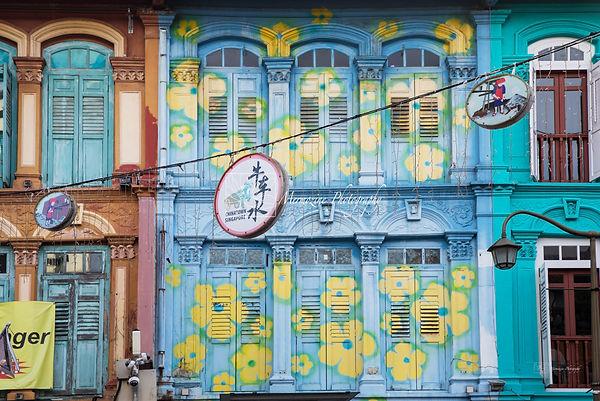 Photographs of Singapore: Chinatown (Shophouses)