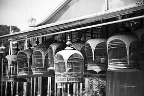 Black and white picture of bird cages in the Kebun Baru Birdsinging Club, Mayflower, Singapore.