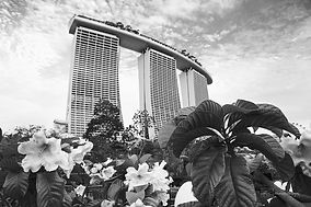 Gardens by the Bay-3774.jpg