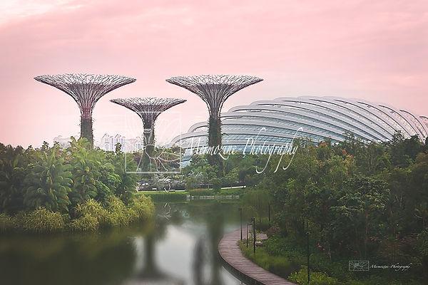Gardens by the Bay-logo.jpg