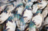 Tekka market-0151.jpg
