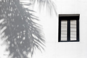 White and Black window and palm tree shadow, Singapore.