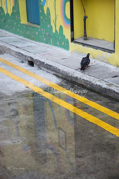 Kampong Glam-0702.jpg