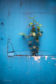 Street photography, minimalism, Singapore.