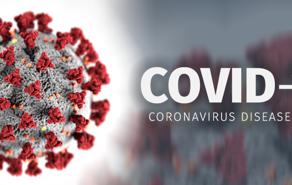 """קורונה - השפעות הלחץ ומערכת החיסון            - ד""""ר צבי פוס"""