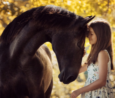 You have all heard it, Horses are Great For individuals with autism. Is it true?