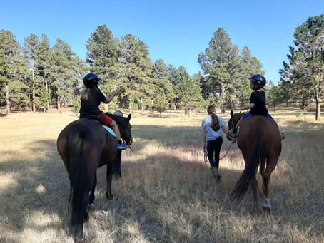 We have all heard it, Horses are Great for Children with Autism - Is it true?  Well, yes and no.