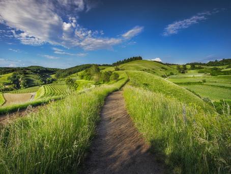 Nyerésre állhat a belföldi turizmus Magyarországon?