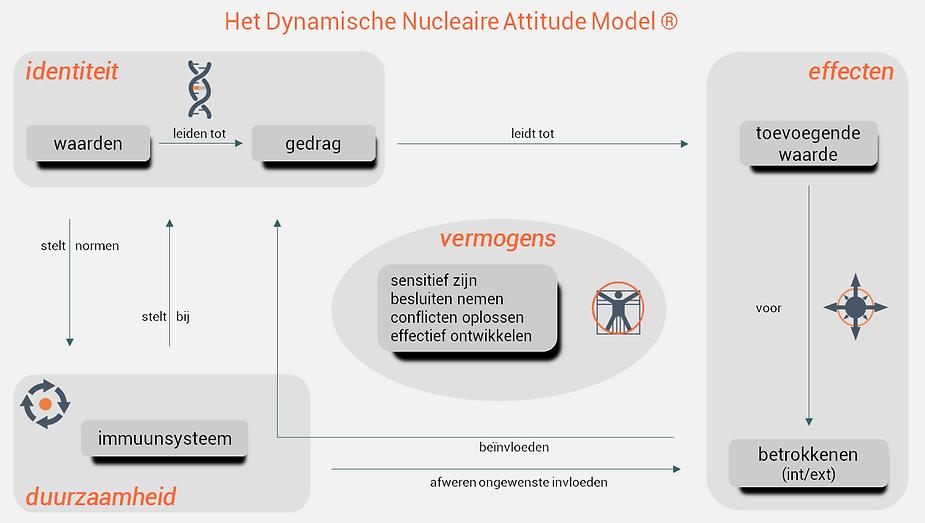 DNA Model voor organisaties