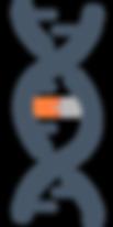 Org DNA Logo zonder letters, 2019 02 18.