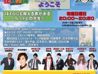 真理子先生 今晩8時、生ラジオに出演!