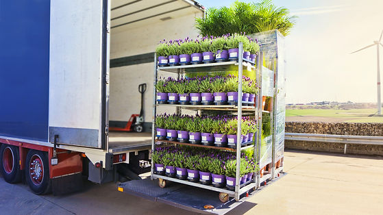 Open delivery truck loaded with pot plan