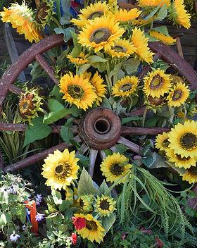 Sunflowers%20and%20wagon%20wheel%2C%20co