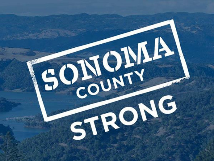 sonomastrong_website_vineyard_600x450.jpg