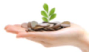 graphic-hand-holding-money-plant-cropped.jpg